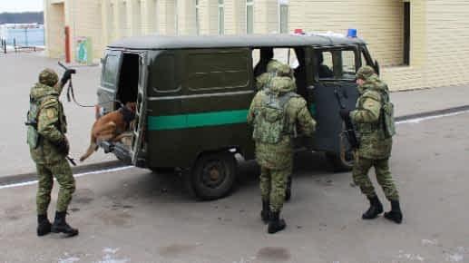 За два дня гродненские пограничники задержали четверых нарушителей