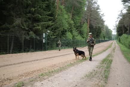 Гражданин Украины с запретом въезда в Беларусь задержан при незаконном пересечен...