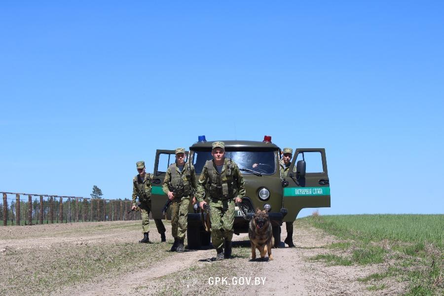 Очередная группа нелегалов задержана лидскими пограничниками